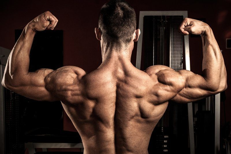 boost muscle building with LGD 4033